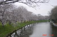 20070331_007